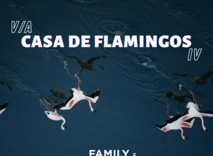 Casa De Flamingo IV family Piknik