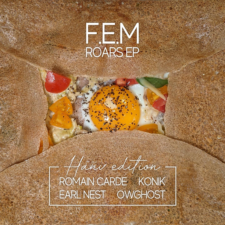 F.E.M - Roars EP Cover